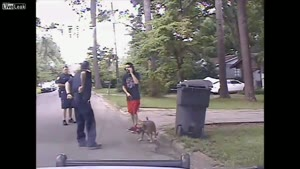 Cop Tazes Dog
